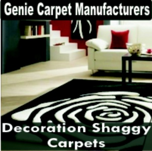 Decoration Shaggy Carpets