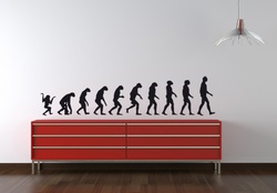 Evolution Wall Decal ( KC012 )