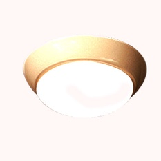 Surface Mounted Light ( Model 03PVLD )