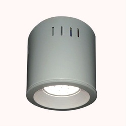 Surface Mounted Light ( Model 111AAX )