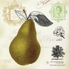 Pear Notes Poster
