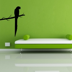 Macaw Wall Decal ( KC281 )