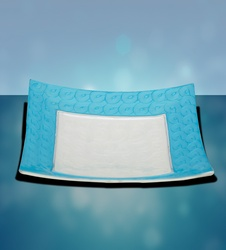 Platter-Square with Blue Border