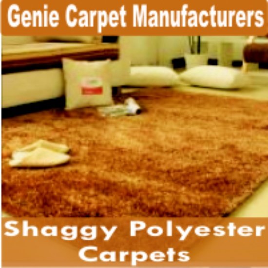 Shaggy Polyester Carpets