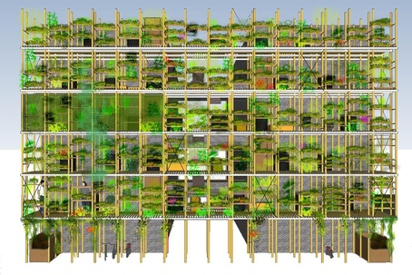 Vertical Kitchen Gardens
