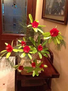 "What say for this ""wild"" flower arrangement?"