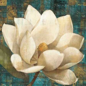 Magnolia Blossom Turquoise Poster