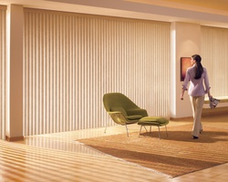 Elegance Window Blinds