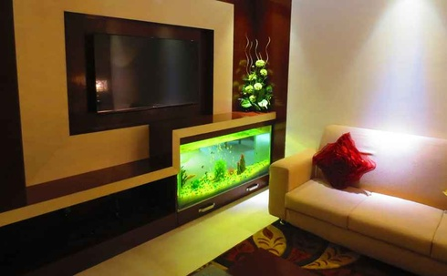 partition wall-cum TV console