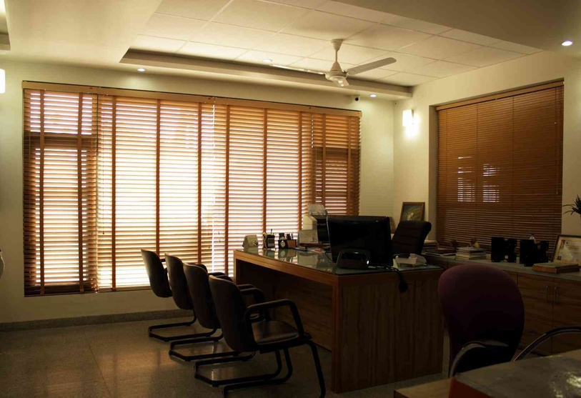 Wooden blinds let in just enough natural light into the office
