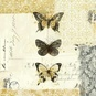 Golden Bees n Butterflies No 2 Poster