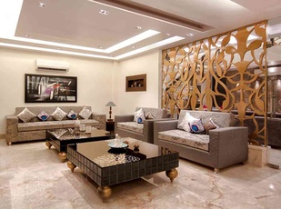 Living Room Divider Design Idea by Interior Designer Rohit Mitra